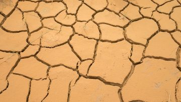 Holy See makes urgent call for 'ambition, action and true solidarity' to tackle climate change