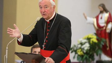 """Cardinal to young people: """"Suffering is not the end of the story"""""""