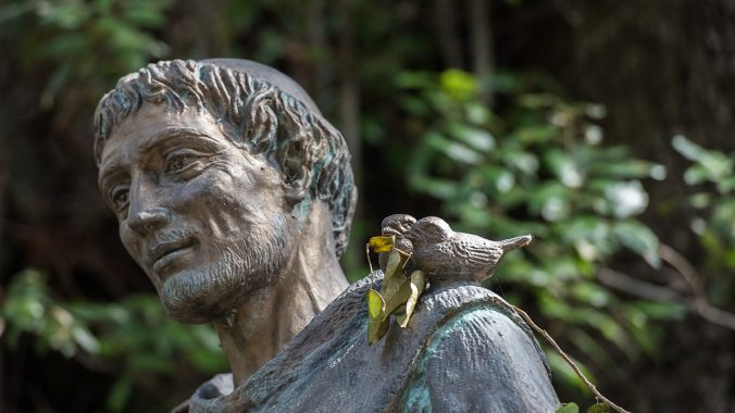 Reflection on Laudato si': Nature, nurture and human ecology