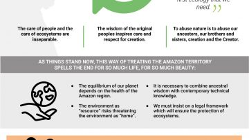 QA-Infographic 4 – Chap III An ecological dream – EN