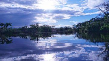 Pope releases Apostolic Exhortation Querida Amazonia – Beloved Amazonia