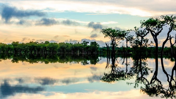 Querida Amazonia - Beloved Amazonia