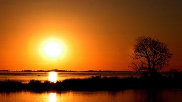 Significance of the Apostolic Exhortation
